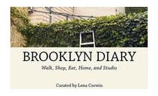 Brooklyn Diary