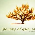EL GRAN YO SOY