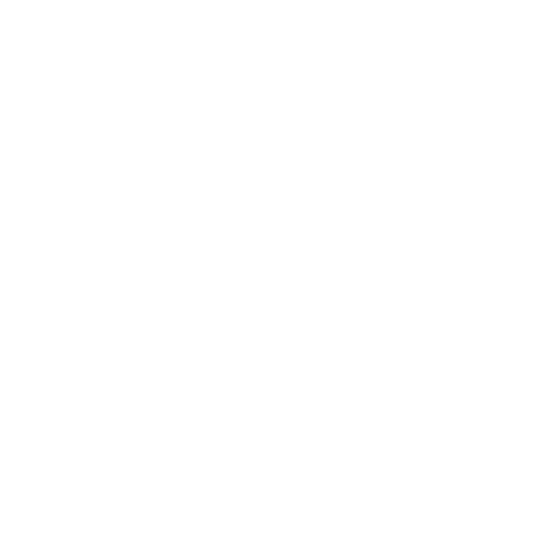 Sydney Based App Business and Local Entrepreneur Dressium worked with Remap to drive brand awareness and App installs across Facebook and Instagram (this is their white logo)