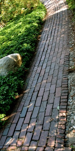 Clay into bricks connect together to form a garden pathway