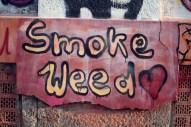 Streetart wird groß geschrieben auf dem Sonnenberg. Weed auch.