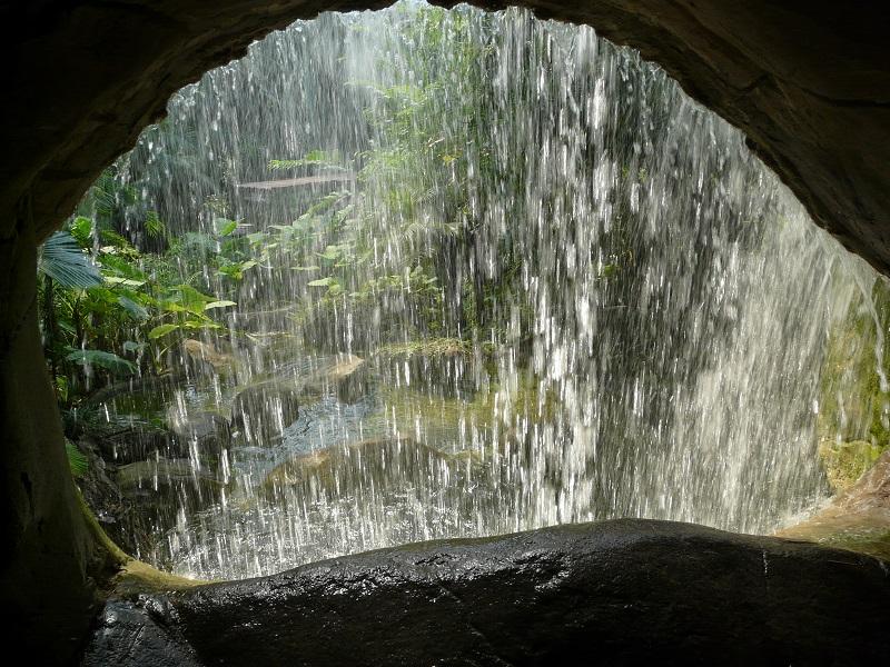 In dieser Wasserfallminiatur, auch als Wasserfällchen bekannt, verbirgt sich immensen Hypnosepotenzial. Einige Zoobesucher standen minutenlang regungslos davor und ließen vermutlich die letzte Folge von Let's Dance Revue passieren.
