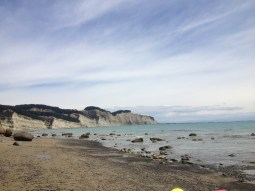 Photos NZ & UK 2015 947