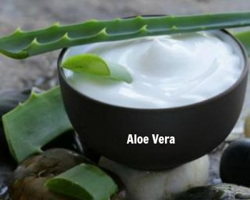 Aloe Vera -How to Get Rid Hemorrhoids at Home Fast -10 Home Remedies for Piles