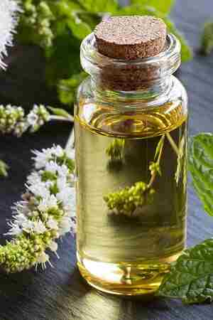 How to Use Essential Oils for Ingrown Hair: 8 Best Home Remedies
