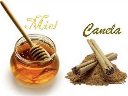 Miel con Canela para Adelgazar
