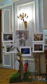 Semaine Photo Pro et Amateurs (11)