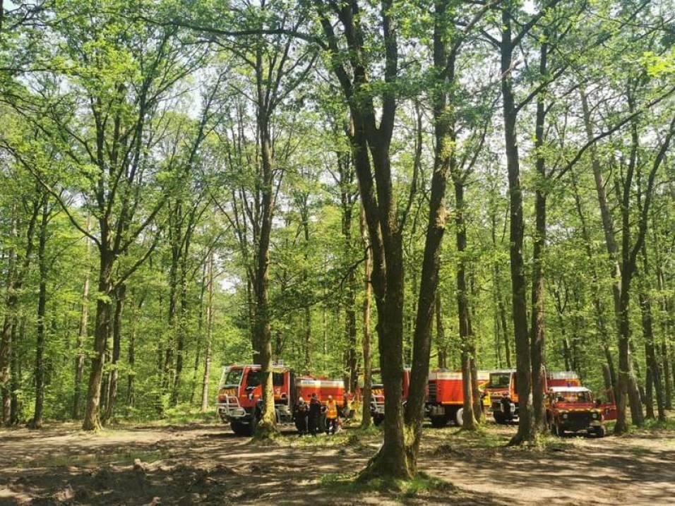 Sapeurs-Pompiers_Vosges-Aix-en-Provence-4