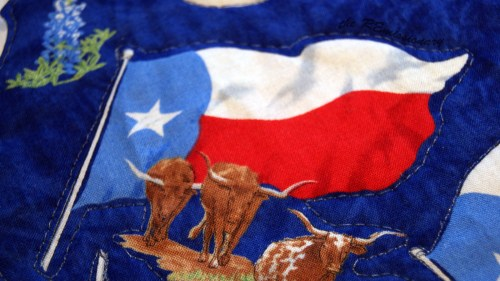 Texas flag/longhorn quilted around