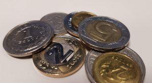 Ile kosztuje administrowanie stroną opartą o CMS?