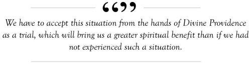 schneider quote 1
