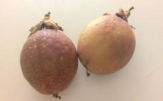 recetas con fruta de la pasión