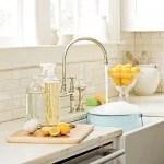 6 DIY Homemade Household Cleaners via Tipsaholic.com