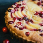 8 Cranberry Dessert Recipes - Tipsaholic.com