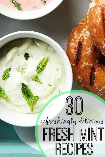 Have a lot of fresh mint to use up? Or maybe you're just in the mood for some minty recipes? Here are 30 fun fresh mint recipes, both savory and sweet! 30 Refreshingly Delicious Fresh Mint Recipes via @tipsaholic #mint #recipes #yummy #mintrecipes #freshmint