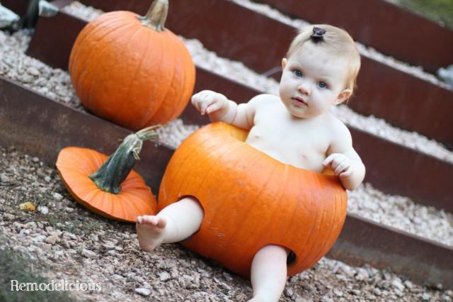 Baby in a pumpkin 2