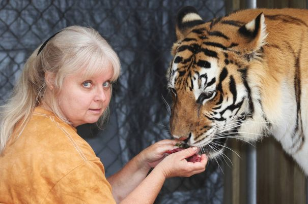 Living-with-Tigers