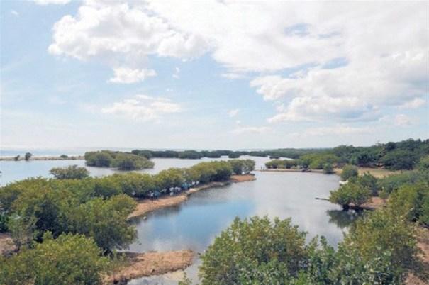 Parque Ecológico Humedales de Nigua.Foto /Listin