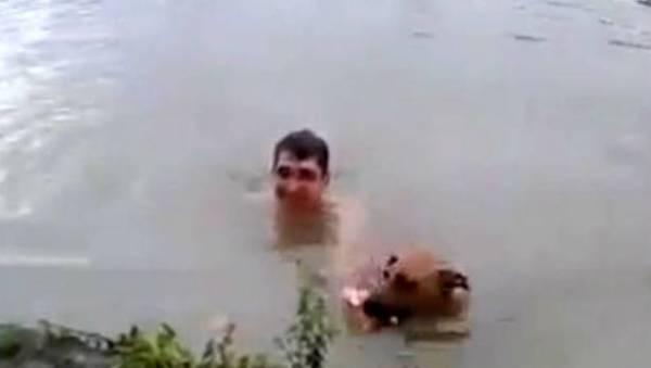 herodog 25983 1 Video   Tipo finge que se ahoga para ser rescatado por su perro