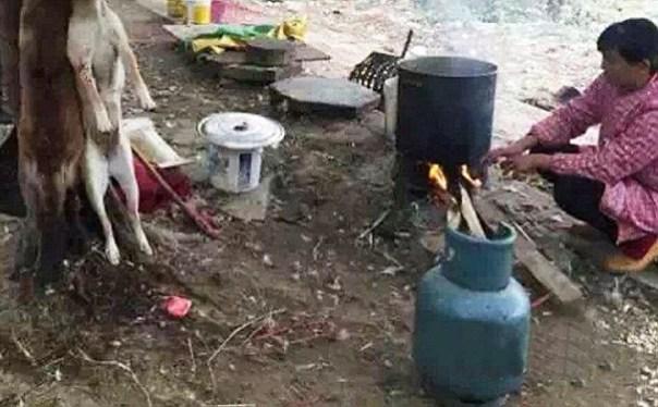 img 4738 Fotos  Vendedores ambulantes chinos vendiendo carne de gato y perro