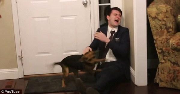 image254 Video   La reacción del perro al ver a su dueño