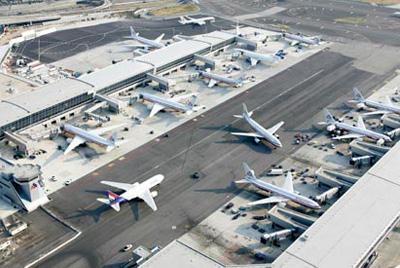 jfk Avión aterriza de emergencia en NY por impacto de un ave