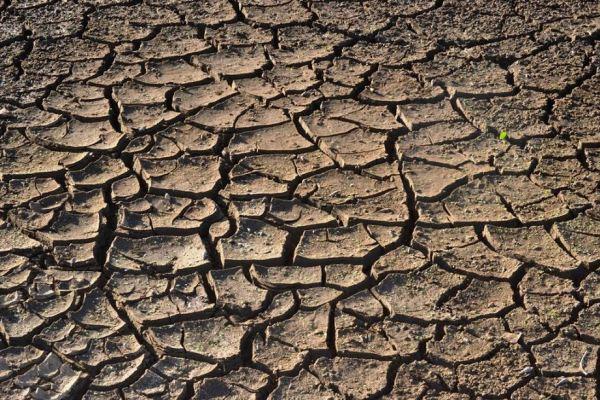 hato El Gobierno dominicano activa hoy emergencia por sequía