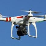 dron pajaros Usarán reguero de drones contra las gaviotas [Reino Unido]