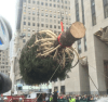 tree El nuevo mega arbolito de Rockefeller Center
