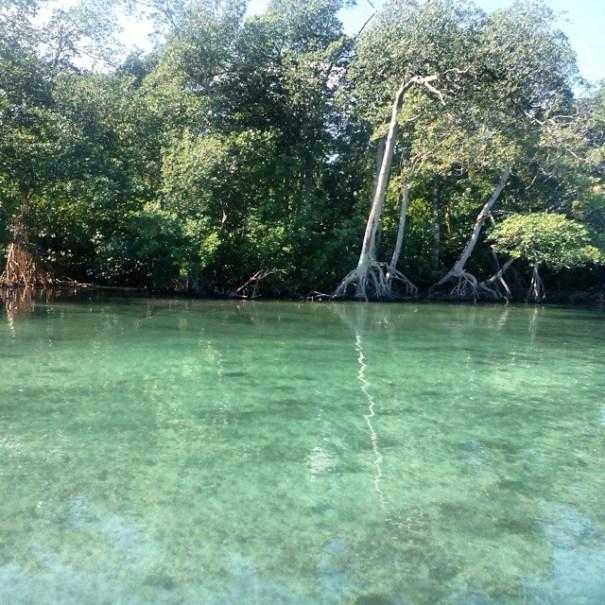 laguna gri gri1 Rincones chulos de Quisqueya: María Trinidad Sánchez