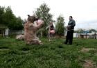 Familia tiene un oso de mascota