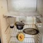 hambre2 Las imágenes del hambre en Venezuela