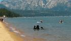 Osos en playa