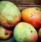 mango Porque debes comer más mangos
