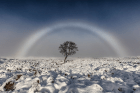 arcoiris-blanco