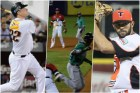 collage-resumen-pelota-22-11-16