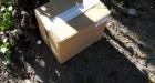 montecristi RD: Mueren dos bebés tras ser abandonados dentro de una caja