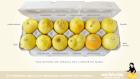 conoce tus limones Crea consciencia sobre el cáncer de mama con limones