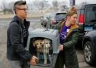 perros Rescatan lote perros criados pa' consumo humano