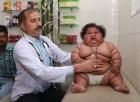 chichi La chichí de 8 meses que pesa 37 libras y pico