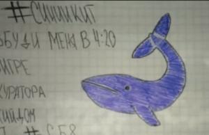 la ballena azul Alerta!   Se registran dos casos del jodío juego ''La Ballena Azul'' en RD
