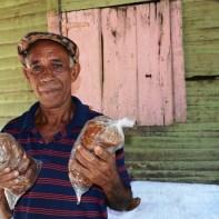 Don Pablo y sus coconetes - Fotos por Timoteo Estevez - www.remolacha.net