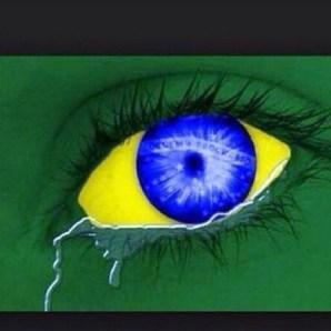 meme6 Bufeo   Los memes mas bacanos de Brasil Alemania