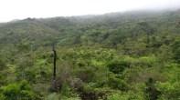 El Valle de Dios (2)
