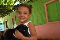 fotos, campo, animales mascotas (4)