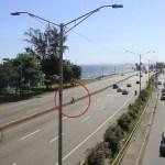 autopista las americas 150x150 Autopista Las Américas: Récord en accidentes y muertes (Reportaje)