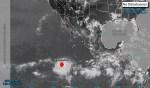 Fernanda 1 150x88 Fernanda toma Forty Malt; se convierte en huracán