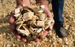 biomasa energia 150x95 La biomasa y su potencial energético en RD