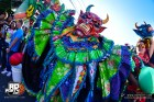 Carnaval Vegano 300x200 El Carnaval Vegano 2018 ta feo pa la foto