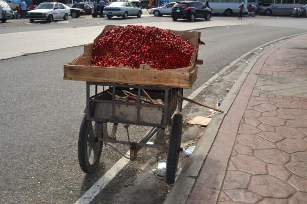 Vendedores de cereza 600x400 Gracias a los anunciantes chulos de esta semana